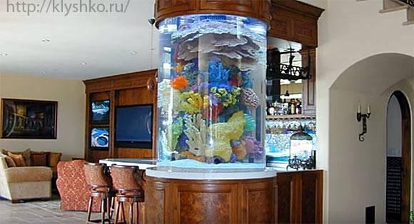 аквариум в интерьре